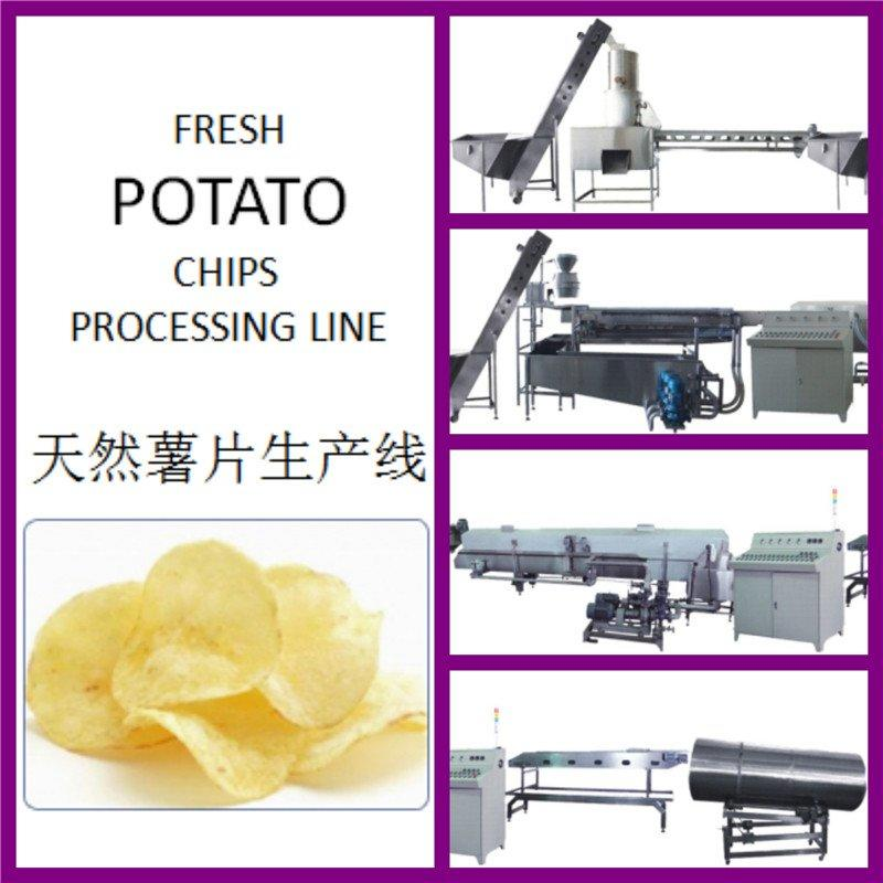 Fresh Potato Chips Processing Line