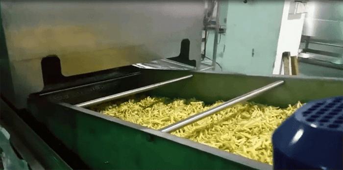 Pellets Fryer 500kgh