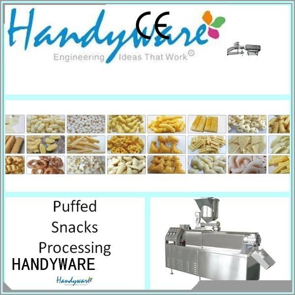 direct frying food OEM twin screw extruder HANDYWARE