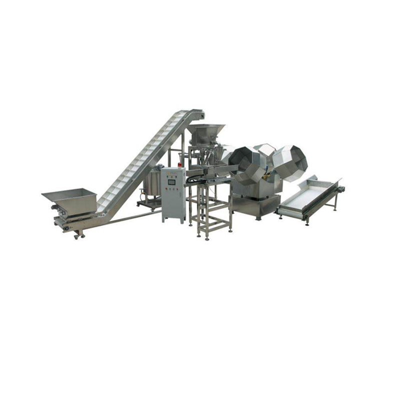 Snacks Coating System